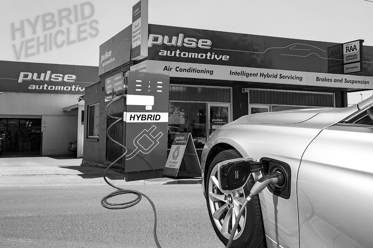 Hybrid & Electric (EV)